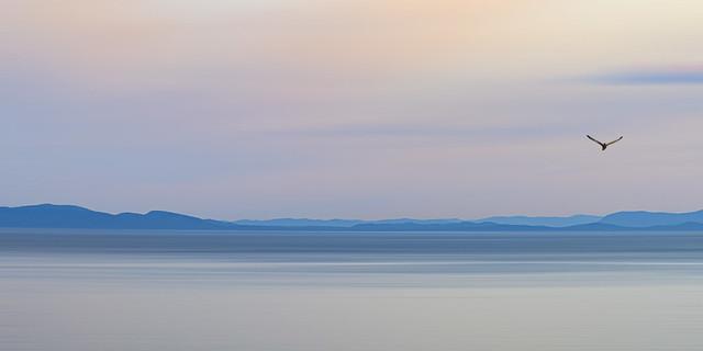Ocean Pastels