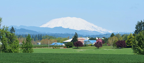 helens mount mt mountain telephoto long lens landscape wideangle angle wide blue sky snow white ridgefield state washington northwest pacific pacificnorthwest 2019 spring april green