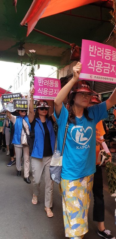 Daegu, South Korea: Shut Down the Chilseong Dog Meat Market and Stop the Illegal Dog Meat Industry!