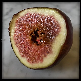 FIGS- are sooo sexy