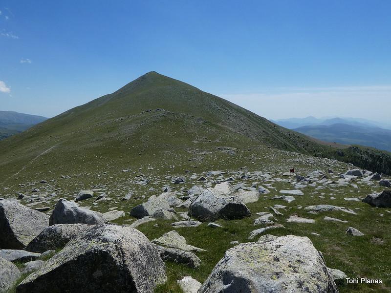 Roca Colom i Costabona