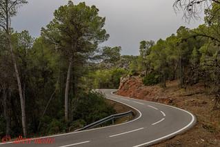 Doble curva carretera El Molar a La Figuera  Priorat  Tarragona
