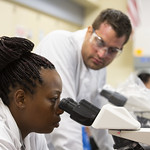 Wed, 2019-05-15 10:26 - Valencia College students at work in the Biotechnology lab on the Lake Nona campus, as part of the Protein Techniques and Tissue Culture class with professor Sothy Kien, on May  15, 2019 in Orlando, Fla.