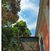 Vista Casa de Rui Barbosa