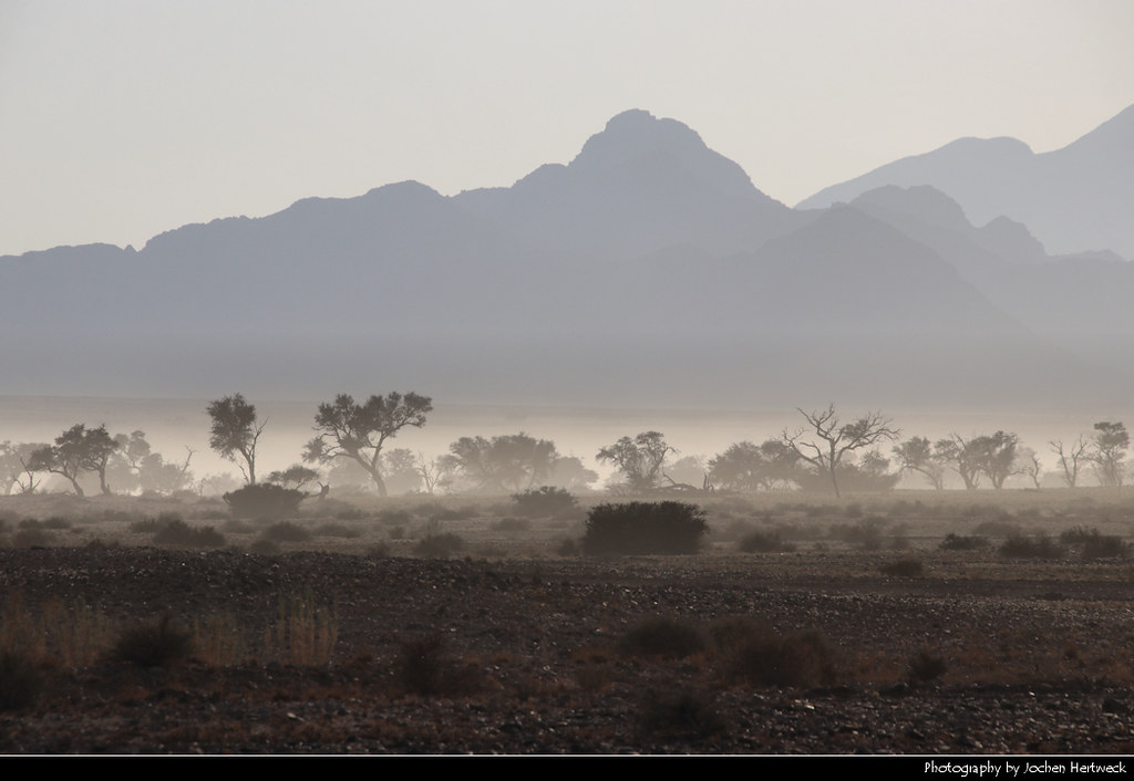 Morning mist, Namib-Naukluft NP, Namibia