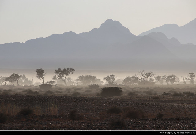 Morning mist, Namib-Naukluft NP, Namibia