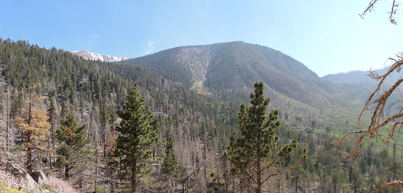 Panorama view of Charlton Peak on a hazy afternoon from the Dry Lake Trail