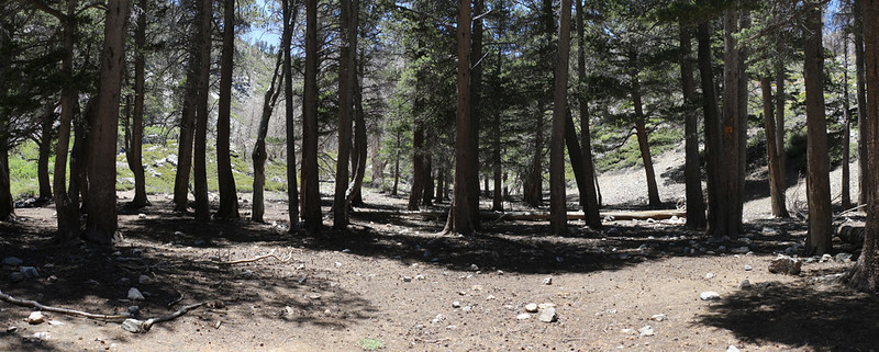 The old Dollar Lake Campground - beautiful spot, but the signs all say No Camping