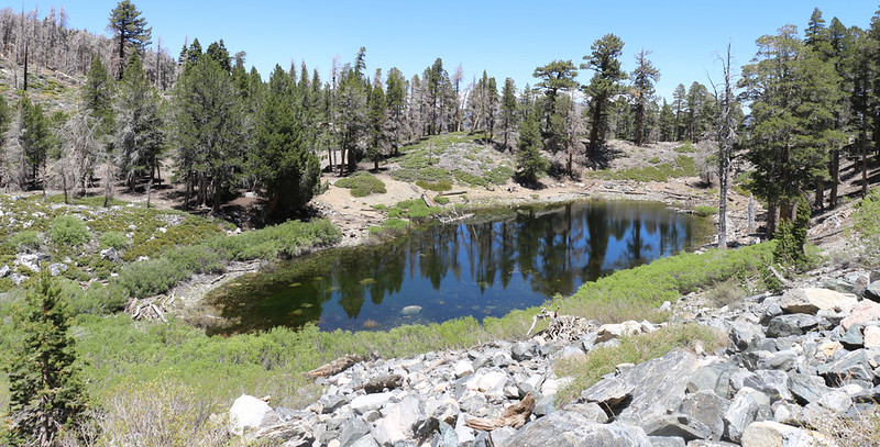 View north over Dollar Lake with the old campground on the left