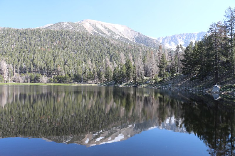 San Gorgonio Mountain reflecting in Dry Lake