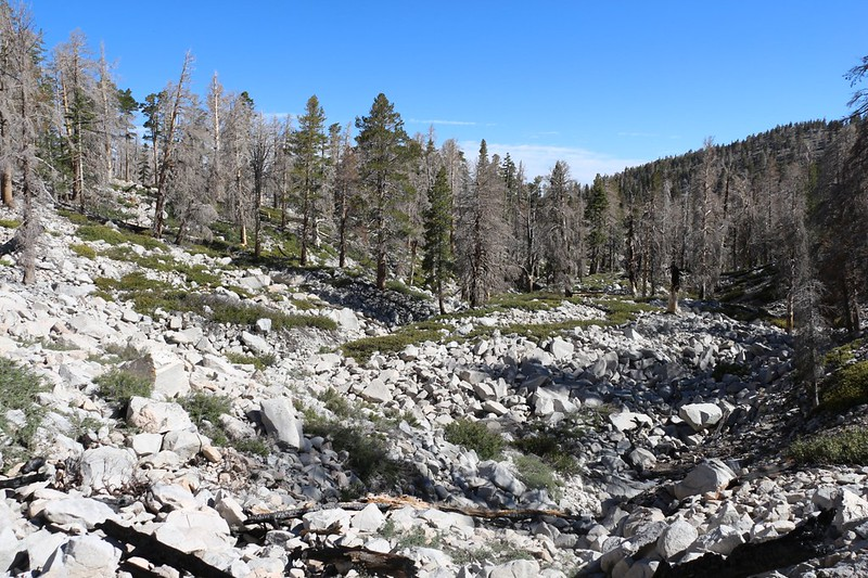 Hiking was slow across the boulder-strewn moraine on the Dry-Dollar Traverse