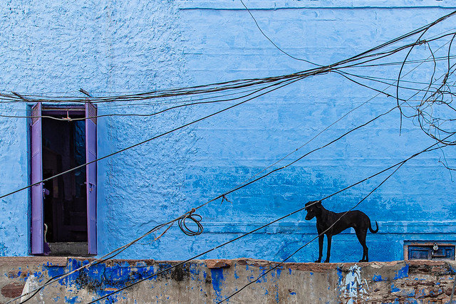 Jodhpur | India Blue City