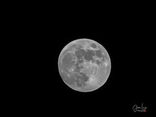 Moon 15 07 19