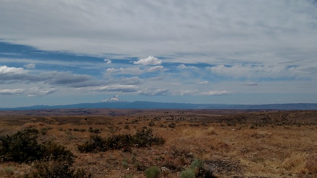 high desert landscape with mountains in the distance