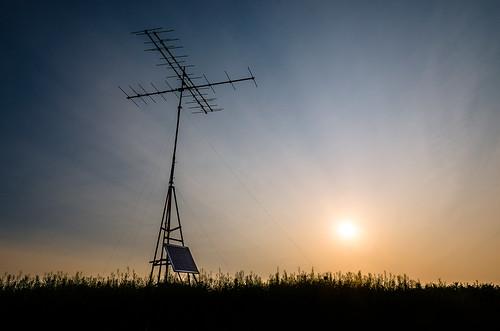 2019 canada maldenpark may ontario windsor spring sunrise