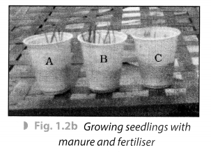 Crop Production and Management Class 8 Science NCERT Textbook Questions A 2.1