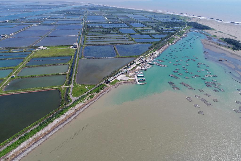 七股臨海地區的文蛤養殖為以直接引用海水、不抽地下水的生態養殖方式打入市場。攝影:許震唐(不適用CC授權)