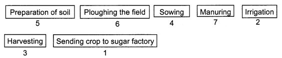 Crop Production and Management Class 8 Science NCERT Textbook Questions Q10.1