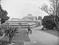 A visit to the Botanic Gardens