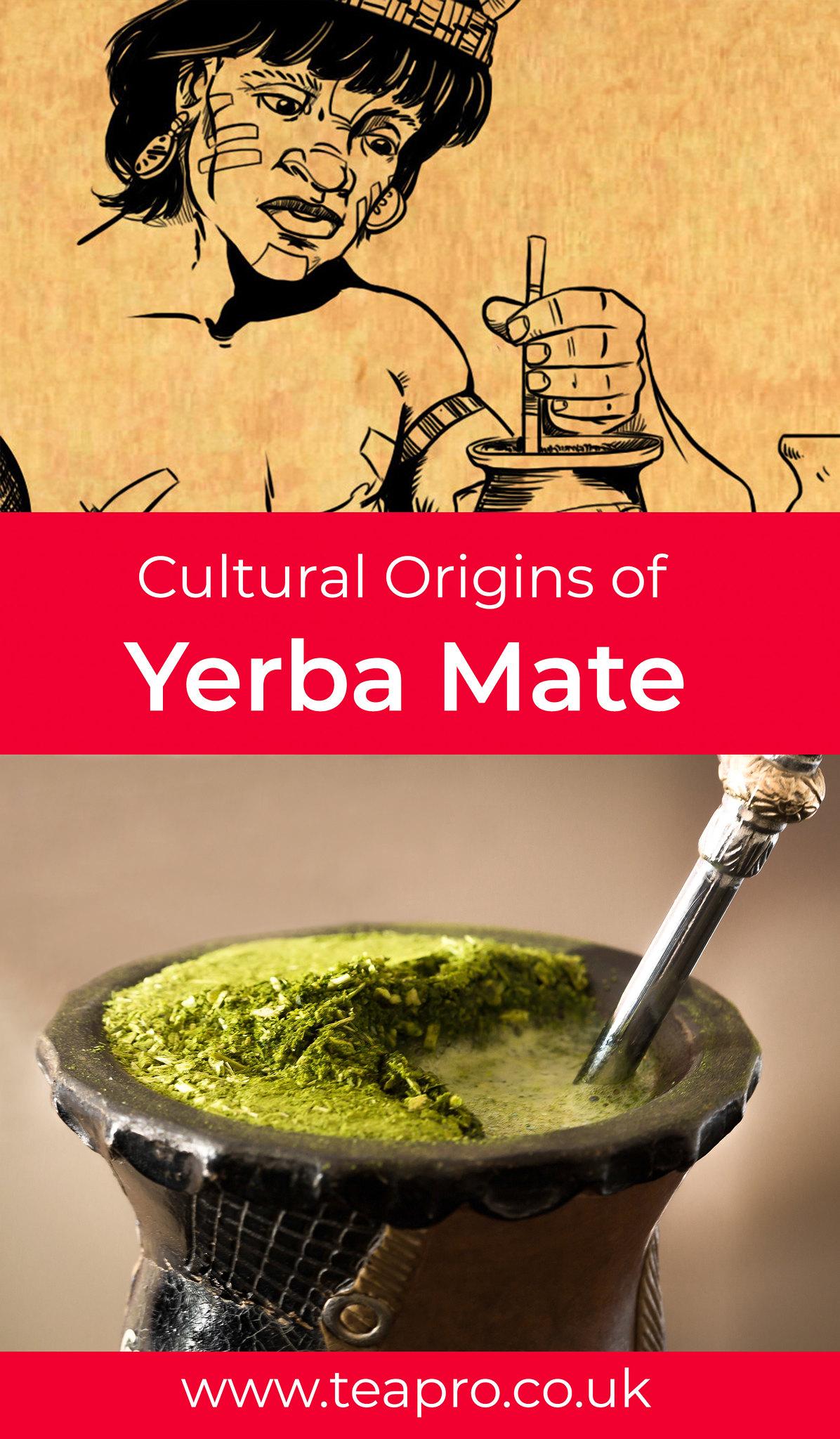 yerba-mate-culture