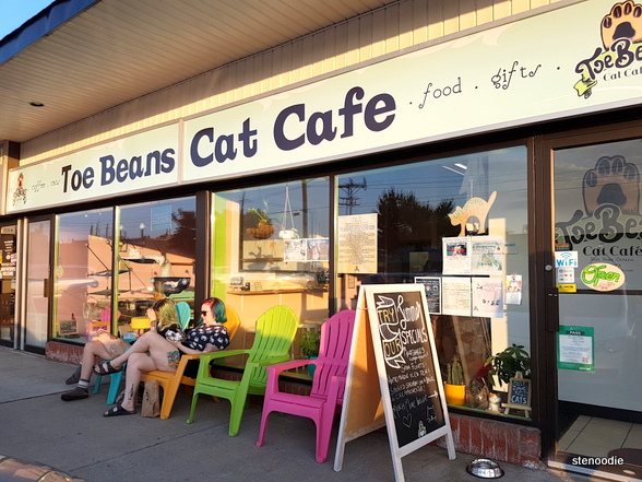 Toe Beans Cat Cafe