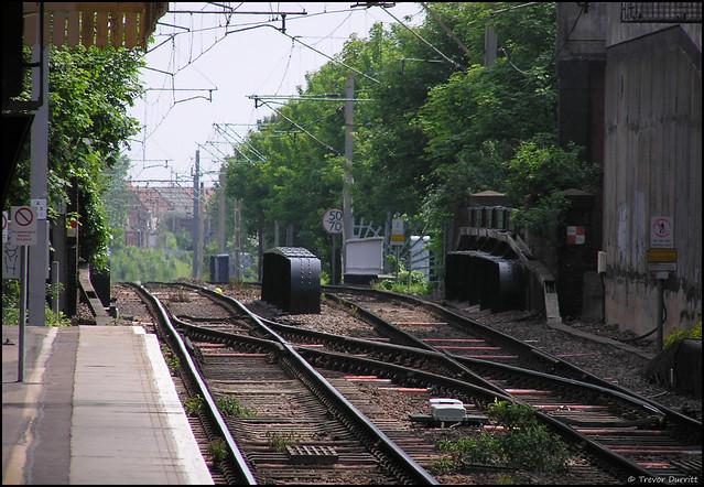 Tracks P5150022