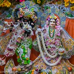 ISKCON Vrindavan Deity Darshan 16 July 2019