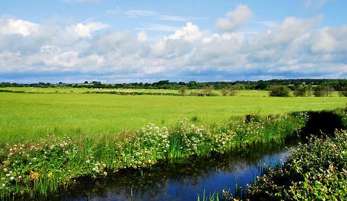 Fields near Kenardington Crossing