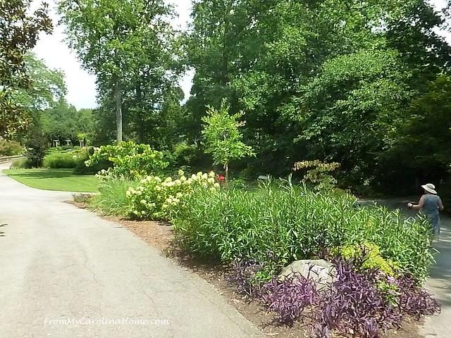 Greensboro Arboretum at FromMyCarolinaHome.com