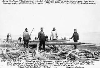 A group of men... saw wood for the S.S. Belvedere on a beach west of King Point, Yukon / Un groupe d'hommes... scient du bois pour le SS Belvedere sur une plage à l'ouest de King Point (Yukon)