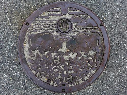 Tsuma Shimane, manhole cover 3 (島根県都万村のマンホール3)