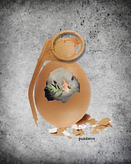 dove peace  granade egg