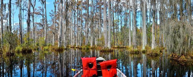 South Carolina, 2011-007.jpg
