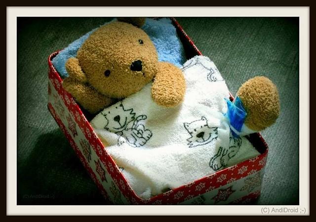 Bären-Pech und Katzen-Glück / Alle Rechte vorbehalten © AndiDroid ;-)   ... HTBT