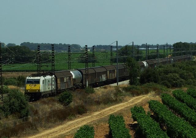 Traxx E 186 317-4 ECR Vias (34 Hérault) 05-07-19a