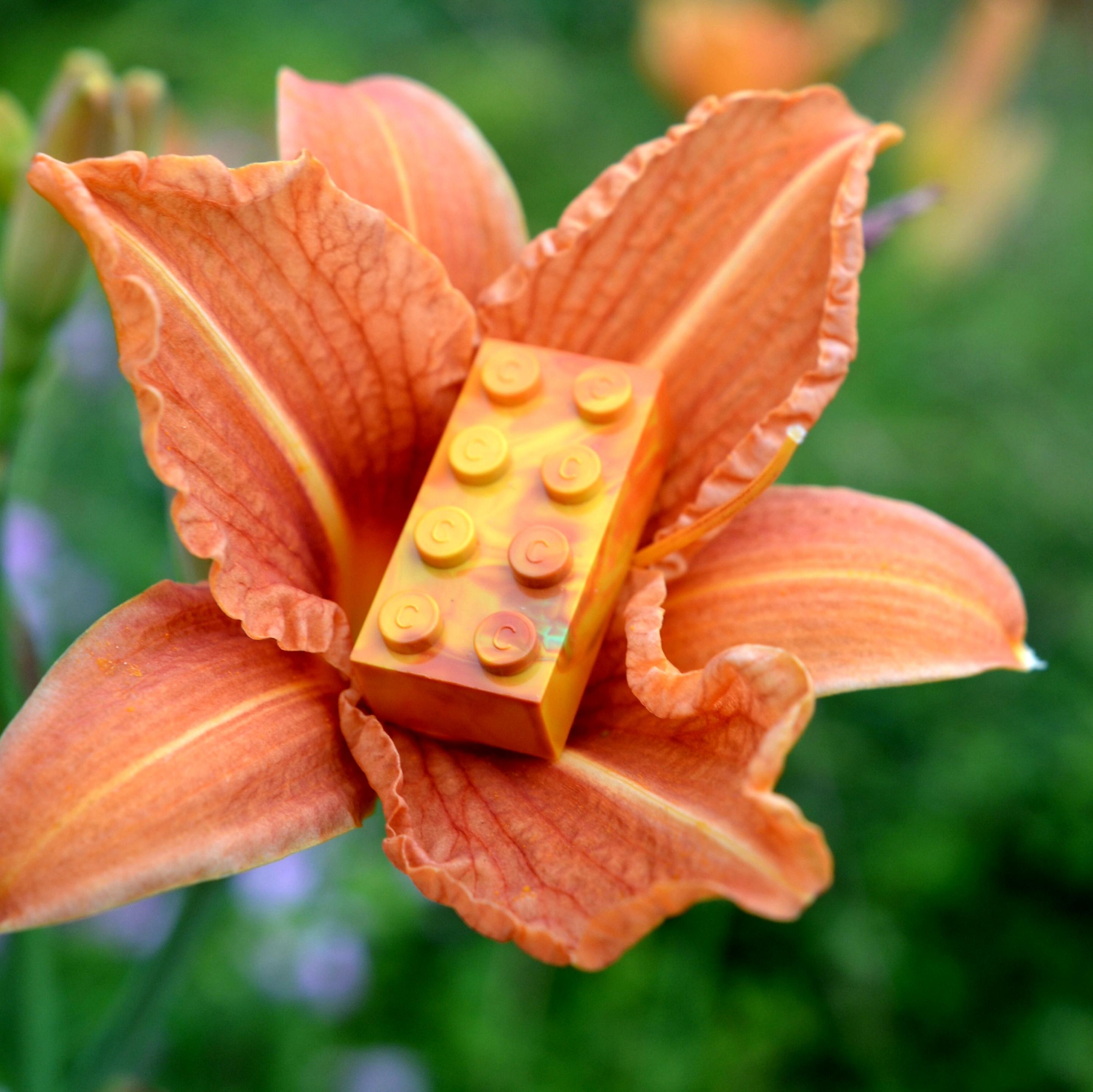 Marbled C brick. :)