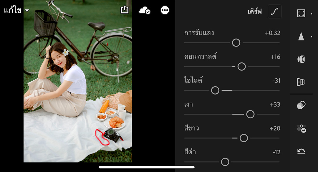 Lightroom-picnic-preset-06