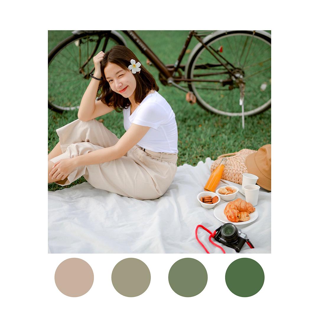 Lightroom-picnic-preset-11