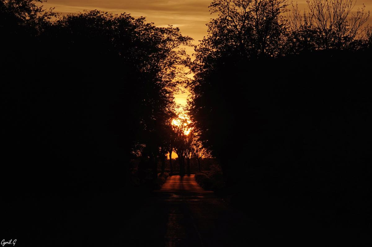 Vers le soleil couchant 48301252161_58dbb27469_o