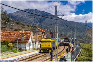 Tren de los 80 y Regional en Tablada
