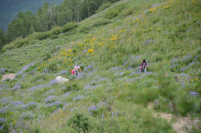 East River Trail, Crested Butte (273)