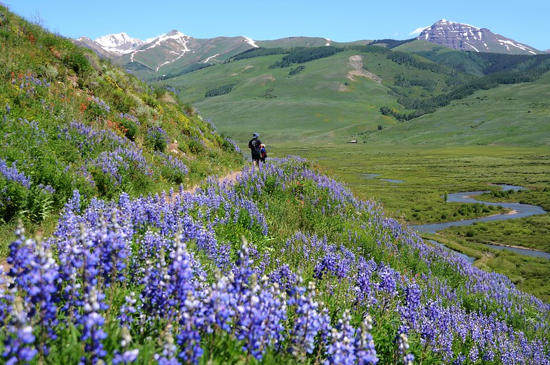 East River Trail, Crested Butte (424)