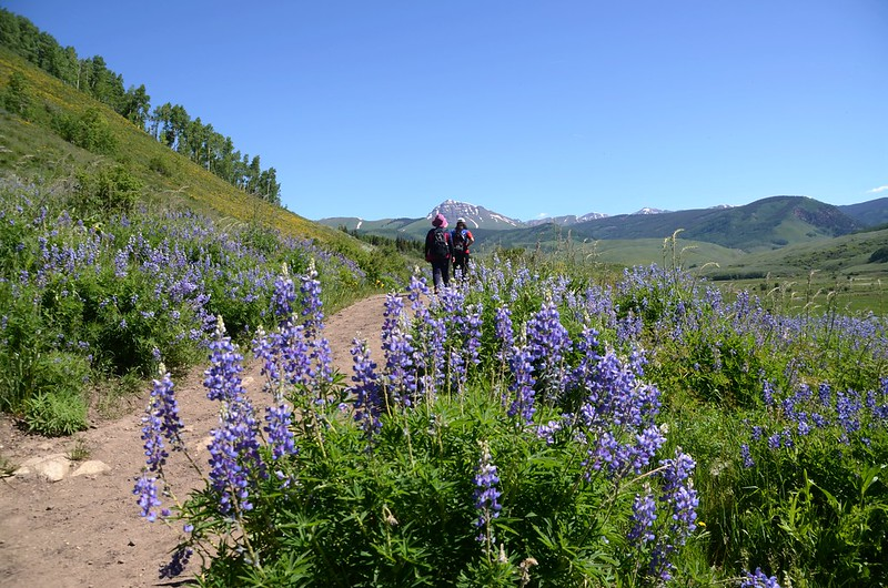 East River Trail, Crested Butte (341)