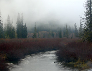 Skagit  River in B.C.  (North Cascades)