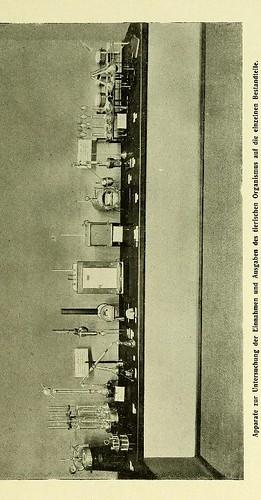 This image is taken from Page 21 of Stoffwechsel der Pflanze und des Tieres