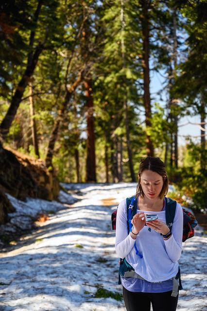 007-Mariposa Grove and Yosemite N - _DZ60062_190412-NIKON Z 6-70 mm-222308-Edit