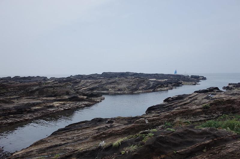 みさきまぐろきっぷの旅 城ヶ島の海岸沿い