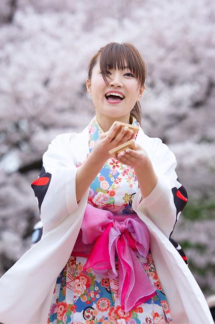 Kyoto Sakura Yosakoi 24