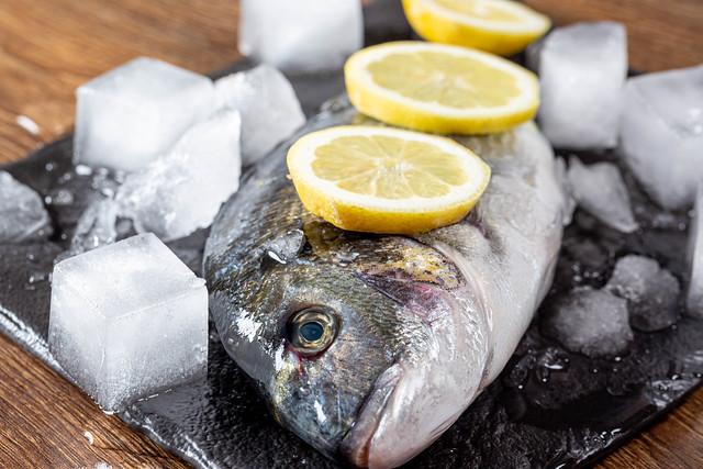 Raw Dorado fish with ice and lemon slices close-up