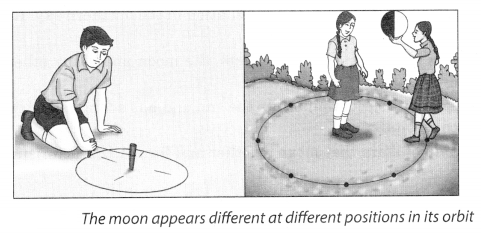 Stars and The Solar System Class 8 Science NCERT Textbook Questions A2